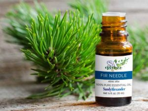 Fir Needle Essential Oil – January's SandyEssence