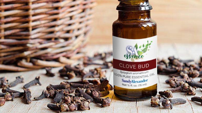 Clove essential oil dangers